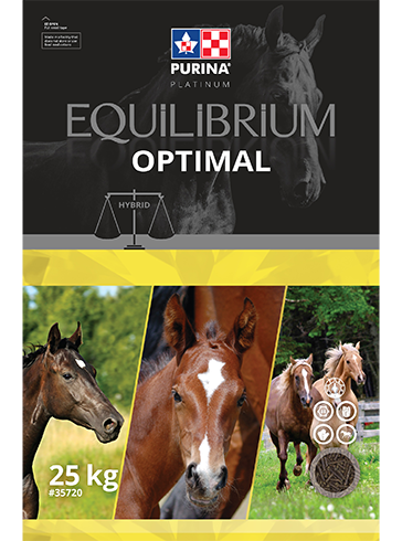Purina Canada Equilibrium Optimal